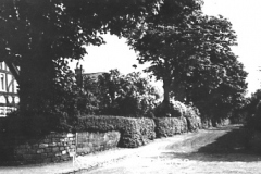 Court Avenue, Halewood