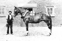 Farmer Jack Kirby of Kirkby