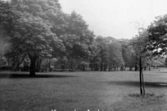 Bowring Park, Roby